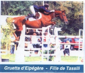 tassili-elpegere8-large